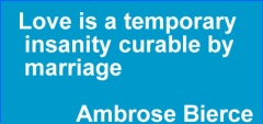 love-is-a-temporary-insanity-curable-by-marriage